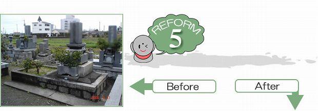 reform-5-1